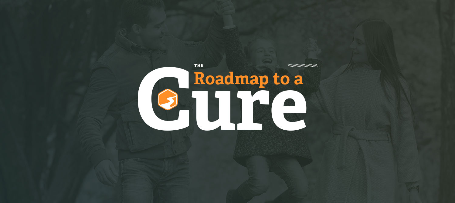 RSRT-Roadmap-HomepageSlider
